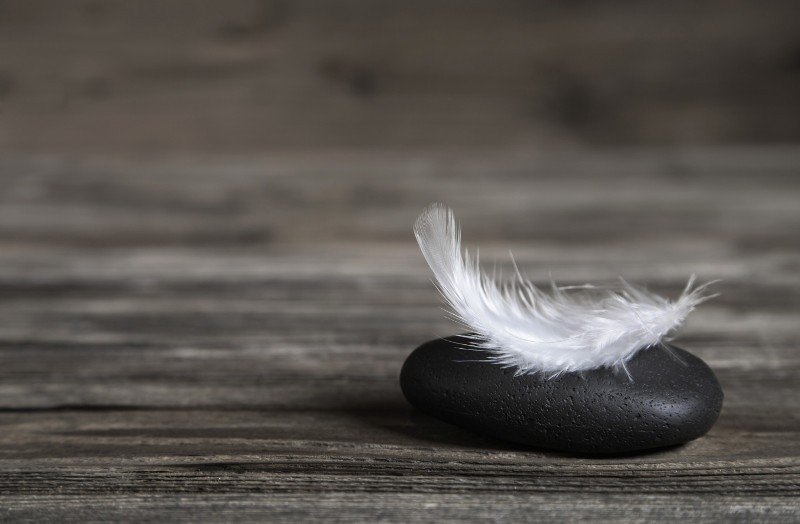 White feather on a black stone: idea for a condolence card or balance concept.