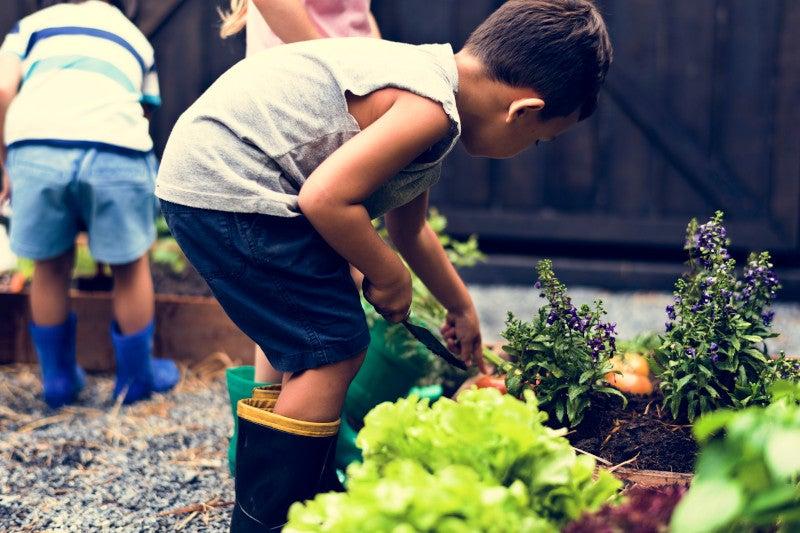 Kid in a garden experience