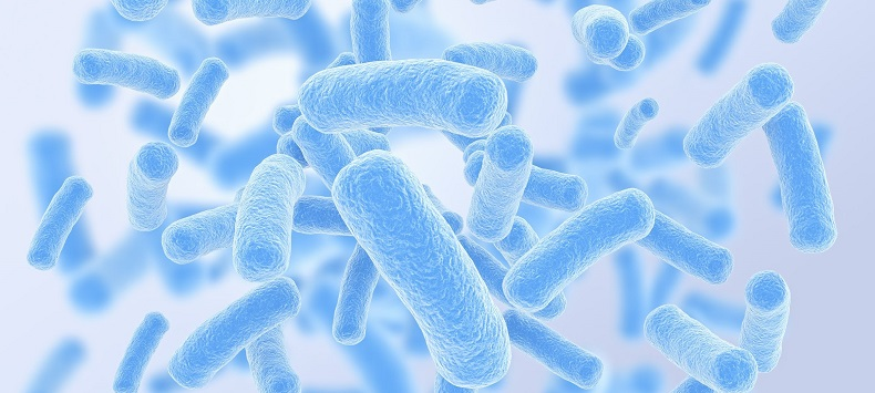 Microbiome Microbes Illness Immune